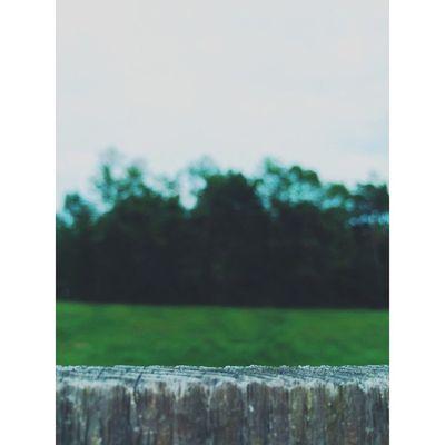 Liveauthentic All_shots Photooftheday Visualsgang VSCO Vscocam Travel Traveling Vscomag Peoplescreatives Wanderlust Justgoshoot Visualsoflife Igrecommend Royalsnappingartists Picoftheday Inspiration Instadaily Globaldaily Instamood Igoftexas Instalove Igershouston Igershou Houston vscogood igmasters passionpassport huffpostgram igtexas