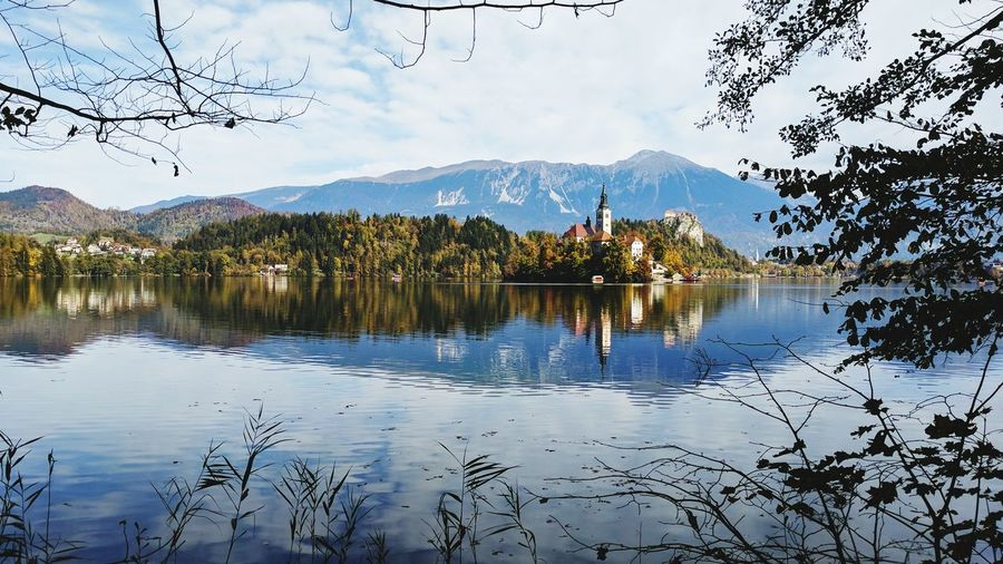 Reflection Lake Mountain Tree Sky Water Scenics Beauty In Nature Outdoors No People Nature Mountain Range Branch Day Bird Nature Autumn Bled Slovenia Reflection Full Length Vacations Adventure Autumn Colors Beauty In Nature