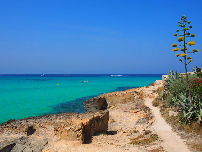 Beach Beachlife Beachphotography Beauty In Nature Blue Clear Sky Horizon Over Water Majorca Mallorca No People Outdoors Sea And Sky Sea View Summer Summertime Sunlight Tranquil Scene Turquoise Turquoise Water Water