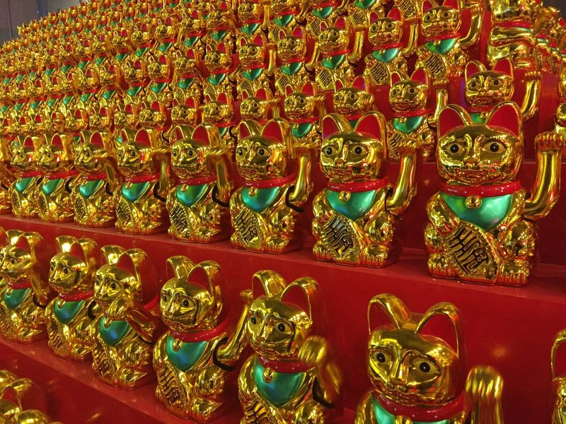 Lucky Cat Chinese New Year In A Row Gold Colored No People Large Group Of Objects Figurine  Statue Decorative Art