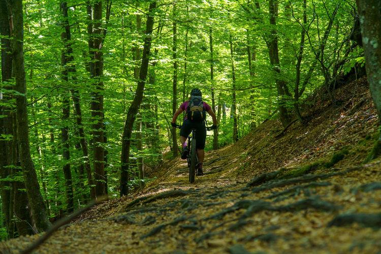 A young woman riding a mountain bike on a singletrail in the austrian alps near klagenfurt, austria.