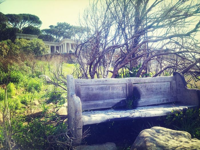 Historical favourite Bench of Cecil John Rhodes Rhodes Memorial