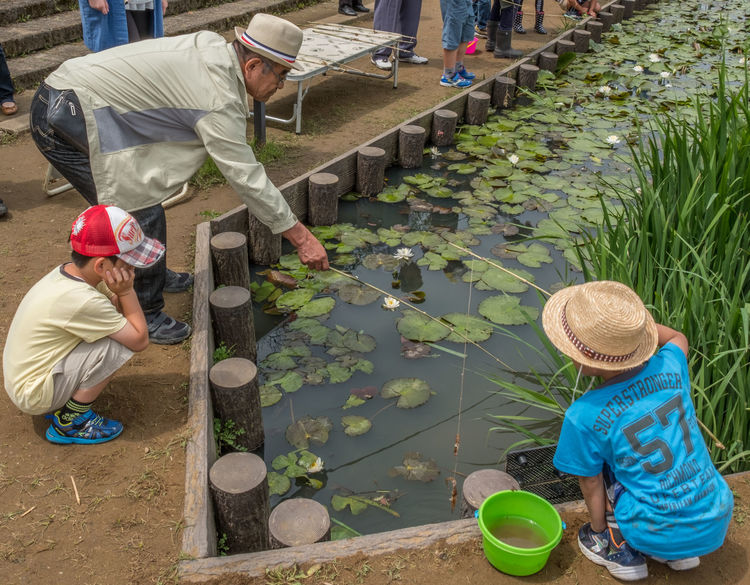 Parents and their children spending time fishing at a small pond in Japan Activity Adults Children Fishing Fun Itako Japanese  LINE Parents Person Play Pond Quality Time Spending Time Together
