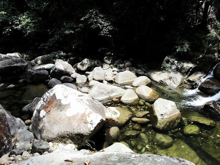 Rocks Freshwater