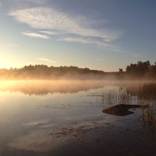 September morning fog MADE IN SWEDEN Calmwater The Calmness Within The Great Outdoors - 2015 EyeEm Awards