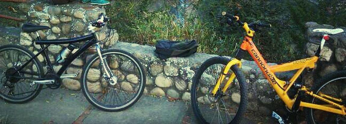 Bike Enjoying Life Hello World My Bikes