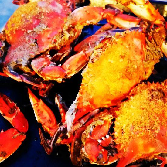 Enjoying steamed Crabs Bethesda Maryland Trip.