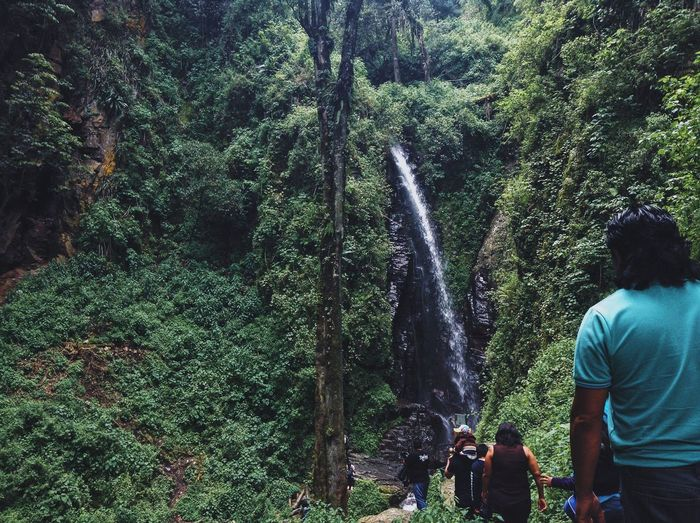 Tourist walking towards waterfall in forest