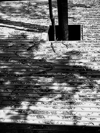 Texture Dry Leaf Dried Leaves Leaves On The Roof Nature Abstract On Roof Art Art Photography Black And White Black And White Photography