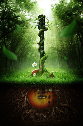Digital composite image of guitar growing from ground