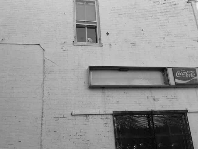Window Shopping Urban Geometry