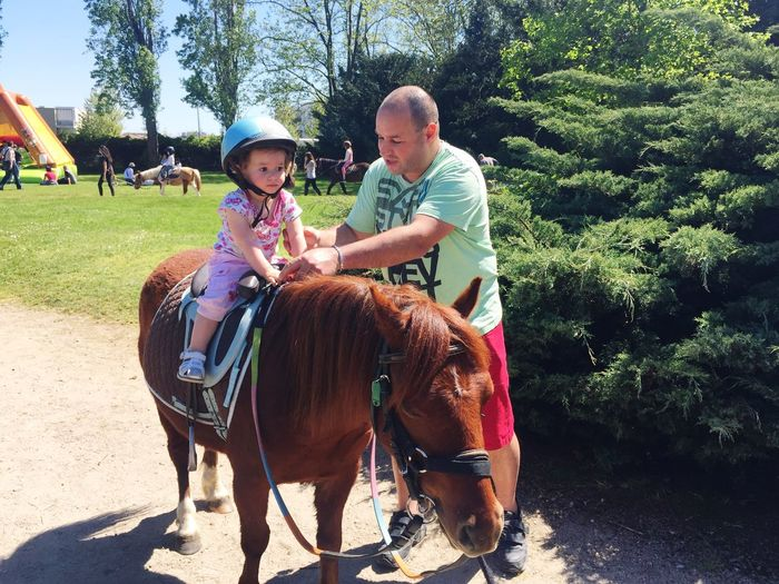 Horse Riding Toddler  Children Baby Fatherhood Moments