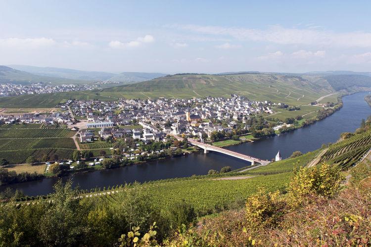 Trittenheim