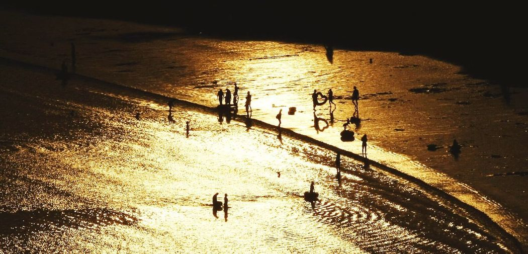High angle view of silhouette people on sea during sunset