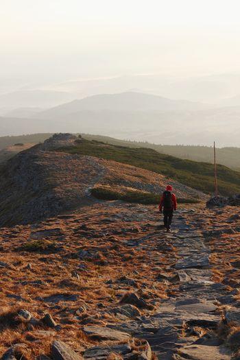 Babia Góra mountain 2013, Beskid Żywiecki. Mountains Nature Landscape Poland Trekking Hiking Travel Traveling Wilderness Hill Valley Fog Sunrise View Rocks Mountain Fog Hiker Backpack Mountain Ridge Sight Go Higher EyeEmNewHere
