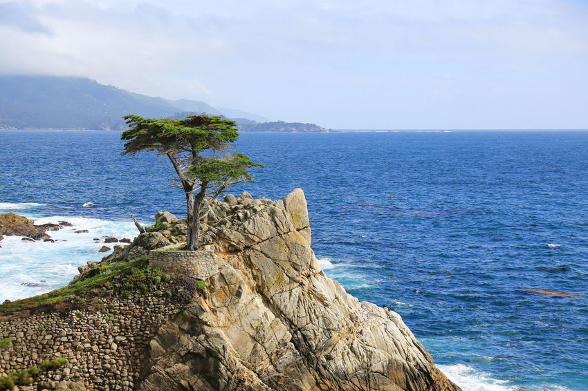 17 Mile Drive Beauty In Nature Blue Coastline Cypress Horizon Over Water Independence Nature Non-urban Scene Outdoors Pacific Ocean Rippled Rock Rock - Object Rock Formation Scenics Sea Seascape Tranquil Scene Tranquility Water