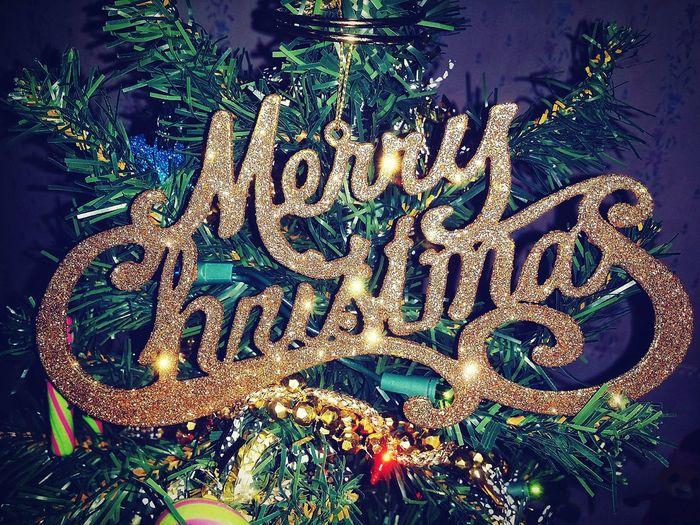 Merry Christmas MerryChristmas Ornament Golden Words Christmas Decoration christmas tree Christmas Ornament Christmas Lights Christmas Time Glitter Sparkle Close-up Christmas