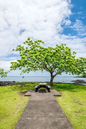 Beauty In Nature Big Island Cloud - Sky Coconut Island Day Grass Green Color Hawaii Landscape Nature No People Outdoors Scenics Sky Snap Snapshot Tranquil Scene Tranquility Travel Traveling Tree United States USA Water