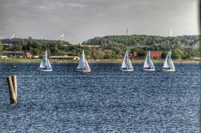 Petits bateaux Petits Bateaux Bateaux Boots Boats Mer Mer Baltique Baltic Sea Ostsee Sea See Rerik Allemagne Deutschland Germany