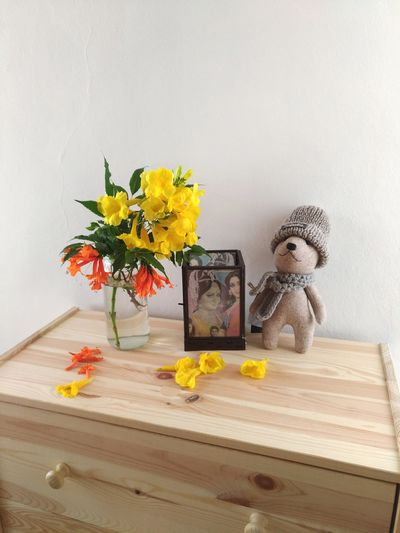EyeEm Selects Indoors  Table No People Flower Day Wood - Material Wood Teddy Bear Toys Home Home Interior Cozy At Home Cozy Moments Cozy Place Cozy