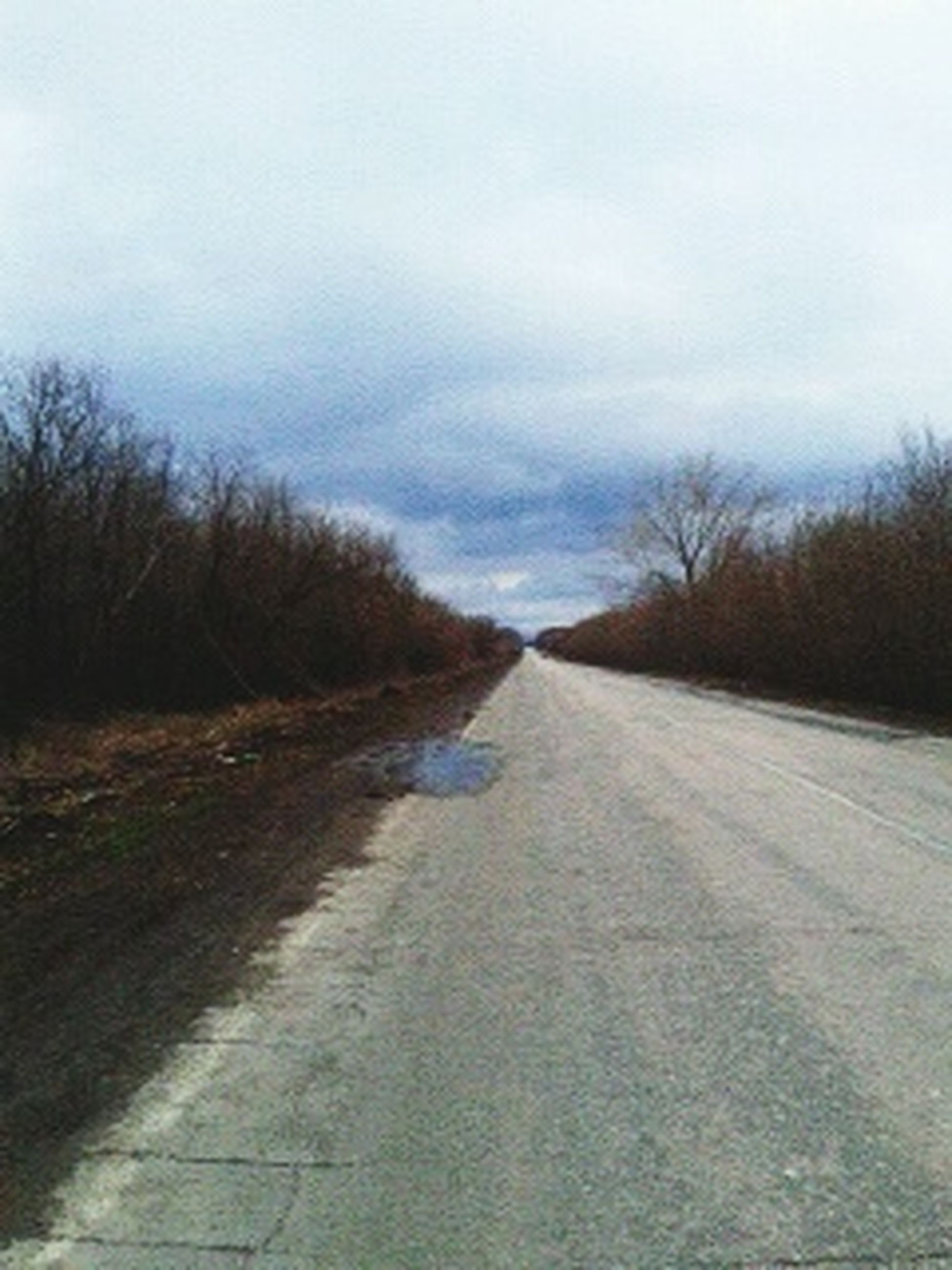 the way forward, diminishing perspective, sky, vanishing point, road, transportation, tranquility, tranquil scene, bare tree, tree, country road, landscape, nature, empty road, long, cloud - sky, surface level, field, dirt road, empty