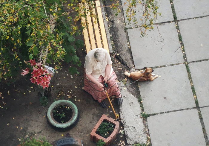 Старость. Outdoors Old Mobilephotography Dog Details Day High Angle View Yard One Person Old Woman Second Acts This Is Aging