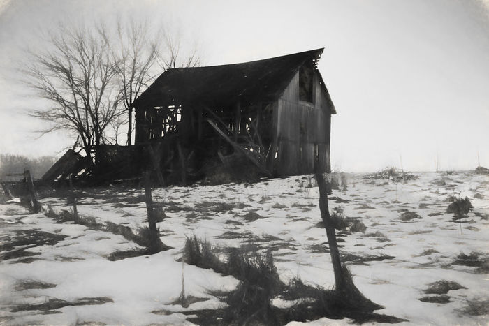 Abandoned Architecture Bare Tree Barn Building Exterior Built Structure Cold Temperature Day Desolate Nature No People Outdoors Sky Snow Tree Weather Winter