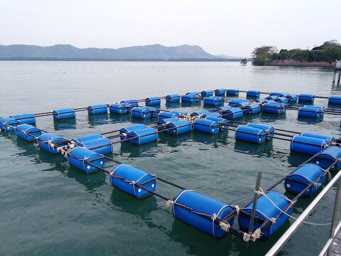 Demonstration Unit For Aquaculture Water Sea Sky Landscape