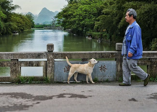 Dog meets man From My Point Of View Outside Dog Nature Crossing Silence Walking in Guilin, Guangxi, China People Watching Everyday Life Passing By Pause