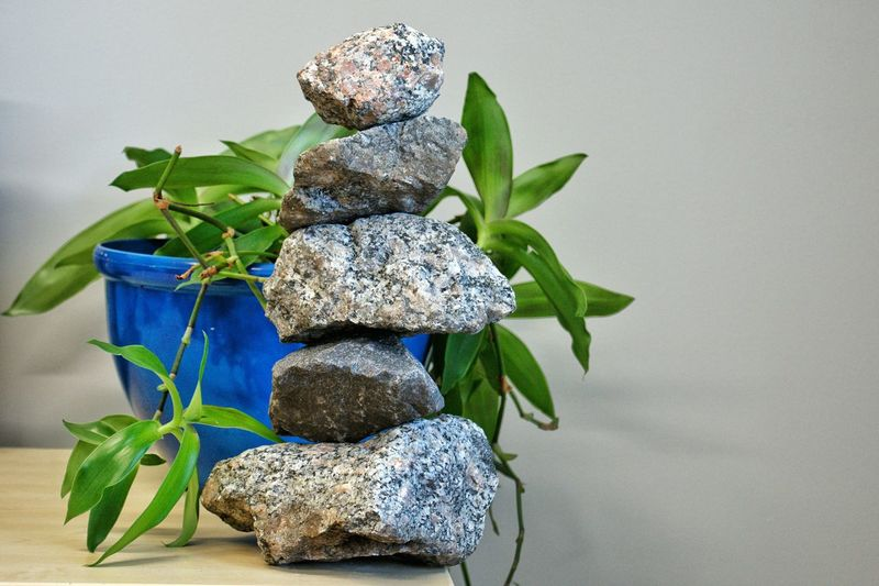 Rocks found outside stacked in my office! Decorative or eyesore? Plant Leaf Potted Plant Indoors  No People Growth Flower Nature Close-up Day Freshness Rock Rock - Object Rocks Rock Formations Stackedrocks Rockstacking