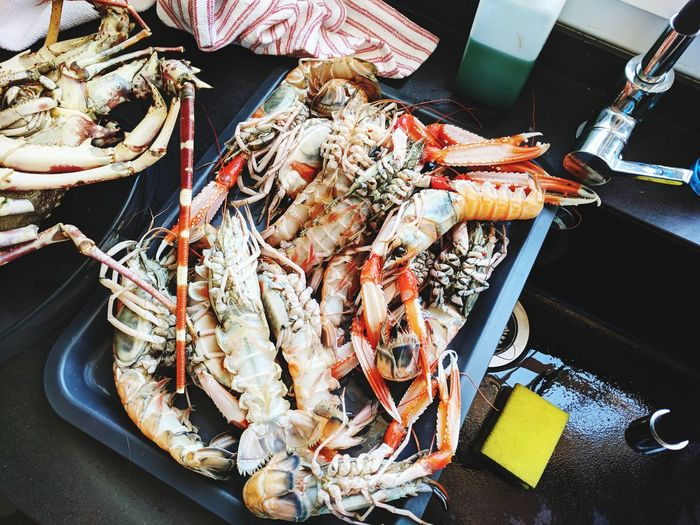 High angle view of seafood in tray