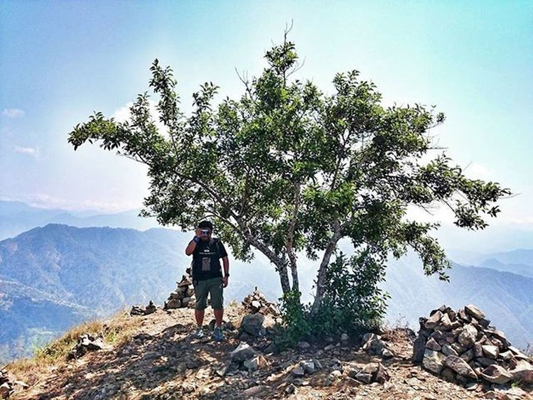 A tree that shedded a man at the top of the mountain Camboytraveler Pinoywanderer Doyoutravel Theglobewanderer Discoverearth Travel_pic Amazing_pictures Sonyxperiaz1