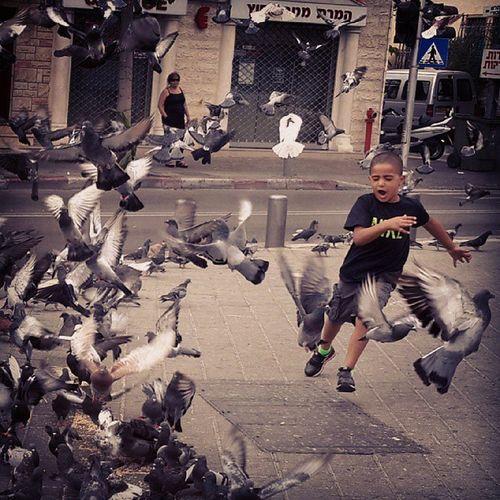 #pigeons #yaffa #boy #birds Boy Birds Pigeons Jaffa Igersisrael Ig_israel Yaffa Il_instagram Instrael Insta_views
