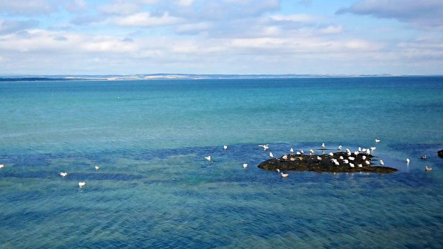 Island Sea Sea