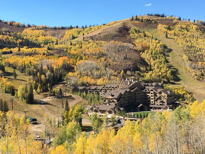 EyeEm Selects Montage Resort Deer Valley Fall Beauty Fall Colors Built Structure Tree House Agriculture Building Exterior Landscape Architecture Yellow Beauty In Nature Rural Scene Tranquility Clear Sky No People Outdoors Nature Scenics Day Sky