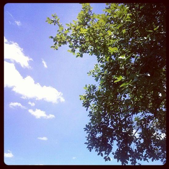 30° Boatarde Calor Sol Quente