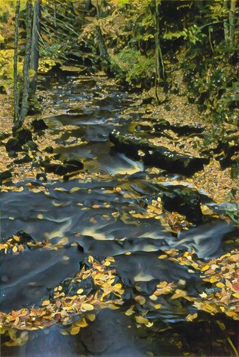 Flowing River Riverbank Riverscape Fall Leaves Yellow And Brown Water Flowing Trees And Nature Falling Leaves On River