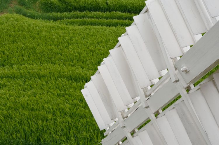 Detail of windmill sail with field in background Windmill Agriculture Architecture Built Structure Close Up Detail Environment Outdoors Rural Scene Sail Tilt White White Color