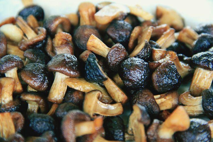 Full frame shot of mushrooms