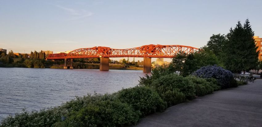 Broadway bridge on Willamette river Blue Sky And Clouds Day Water Plants Springtime No Filter Purist No Edit No Filter Sunset Red Pathway Tree Bridge - Man Made Structure Sky Architecture Plant Built Structure