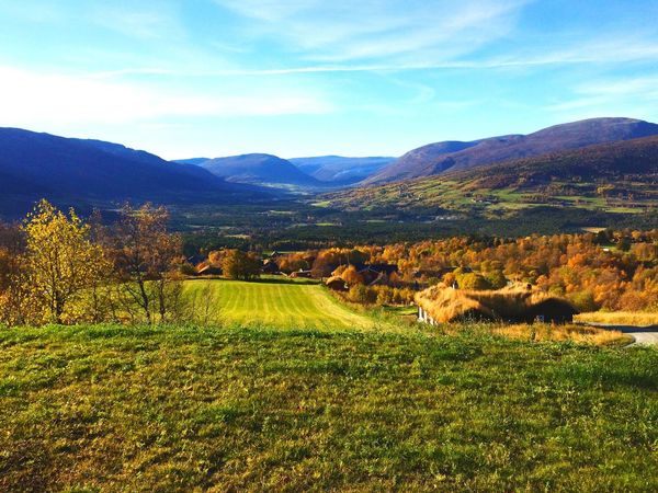 Oppdal, Norway. Norway Oppdal Nature Beautiful Green Grass Tree Cabin Summer Love Mountain Mountain View