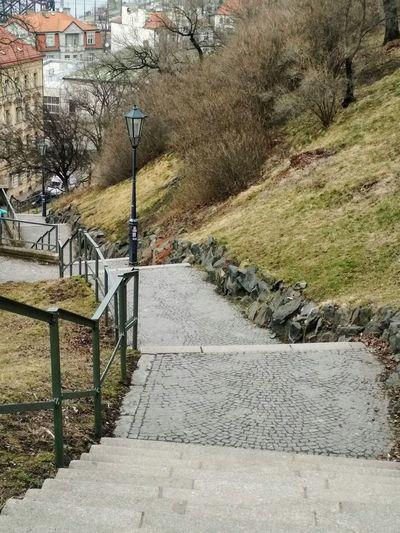 Lantern Park -