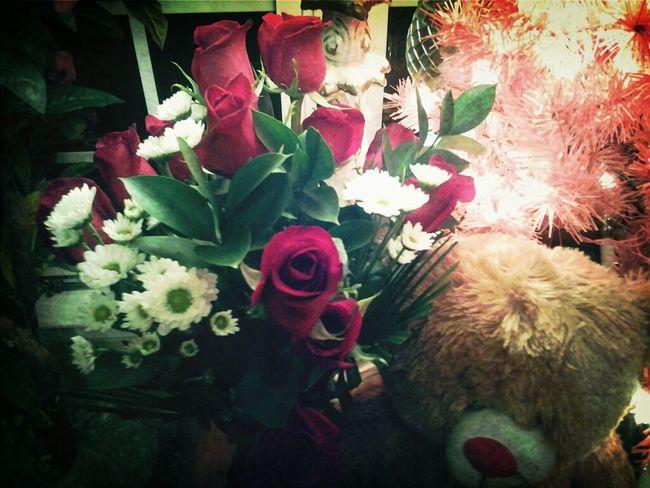 My Beautiful Roses