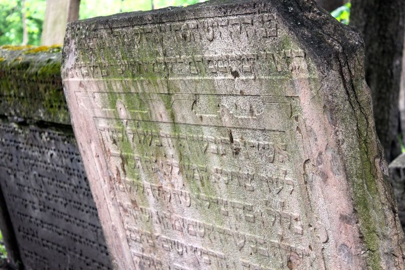 tombstones in the Old Jewish Cemetery in the Old Jewish Quarter of Prague Old Jewish Quarter Ancient Ancient Civilization Architecture Built Structure Close-up Day History No People Old Jewish Cemetery Outdoors Text Tree Tree Trunk