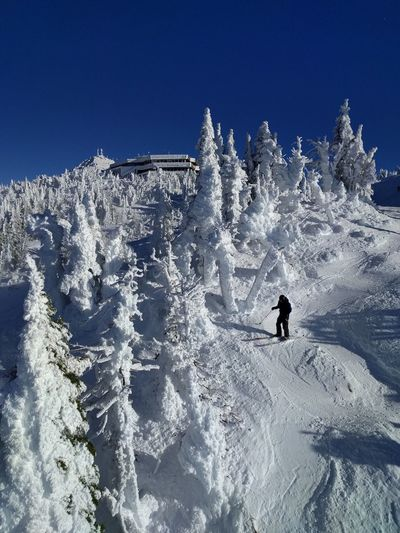 Duh dude! Snow Winter Cold Temperature Adventure Ski Holiday Beauty In Nature Nature Skiing Weather Day Real People Clear Sky Scenics One Person Mountain Lifestyles Sunlight Ski Pole Outdoors Full Length