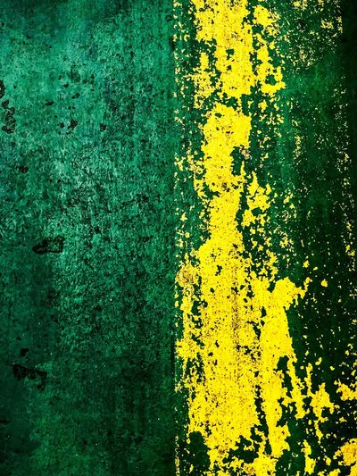 Basement. Yellow Full Frame No People Day Backgrounds High Angle View Plant Green Color Outdoors Close-up Pattern Textured  Built Structure Architecture