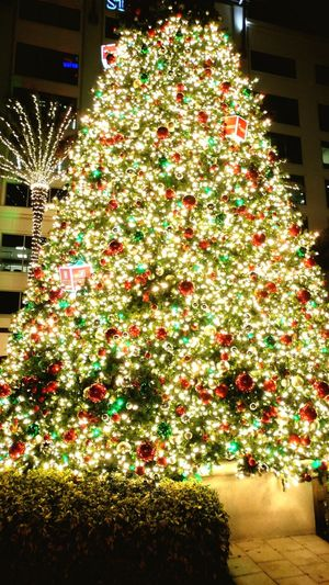 Christmas Christmas Tree Celebration Christmas Decoration Illuminated Christmas Lights Tradition Night Tree Celebration Event Christmas Ornament Holiday - Event No People Built Structure Building Exterior Architecture Christmas Market Tree Topper Outdoors