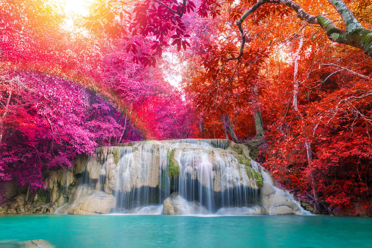 Scenic view of waterfall in autumn trees