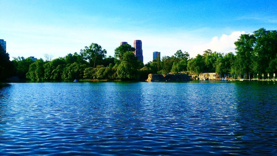 Tree Water Sky Blue City Nature Architecture MexicoOutdoors Places In The City Nature Lake Day
