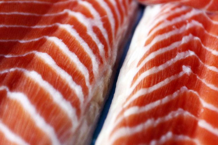Full frame shot of salmon
